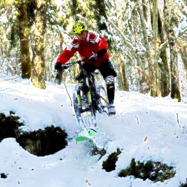 BikeBoards Changes Winter Sports by Adding Boards to Anything with Wheels